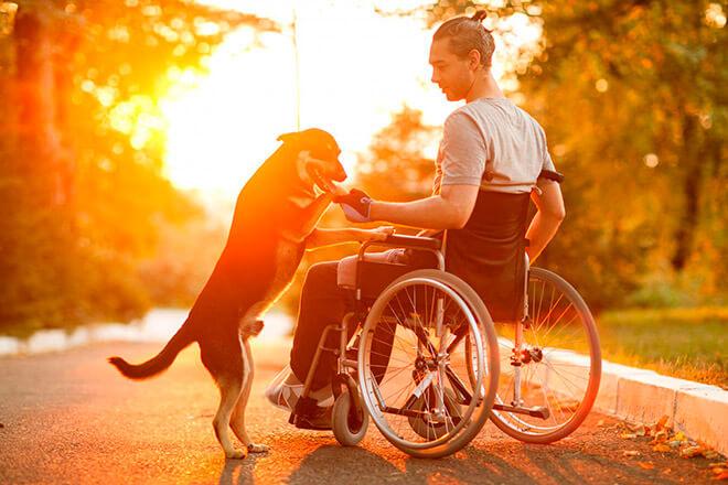 Какие льготы положены инвалидам 1 группы?